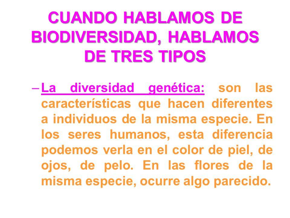 CUANDO HABLAMOS DE BIODIVERSIDAD, HABLAMOS DE TRES TIPOS