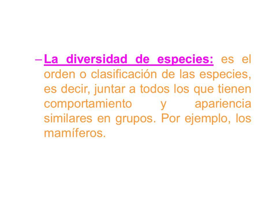 La diversidad de especies: es el orden o clasificación de las especies, es decir, juntar a todos los que tienen comportamiento y apariencia similares en grupos.