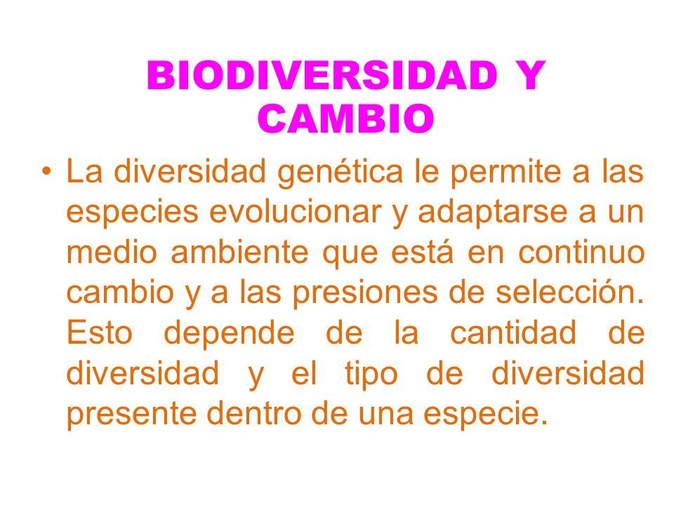 BIODIVERSIDAD Y CAMBIO