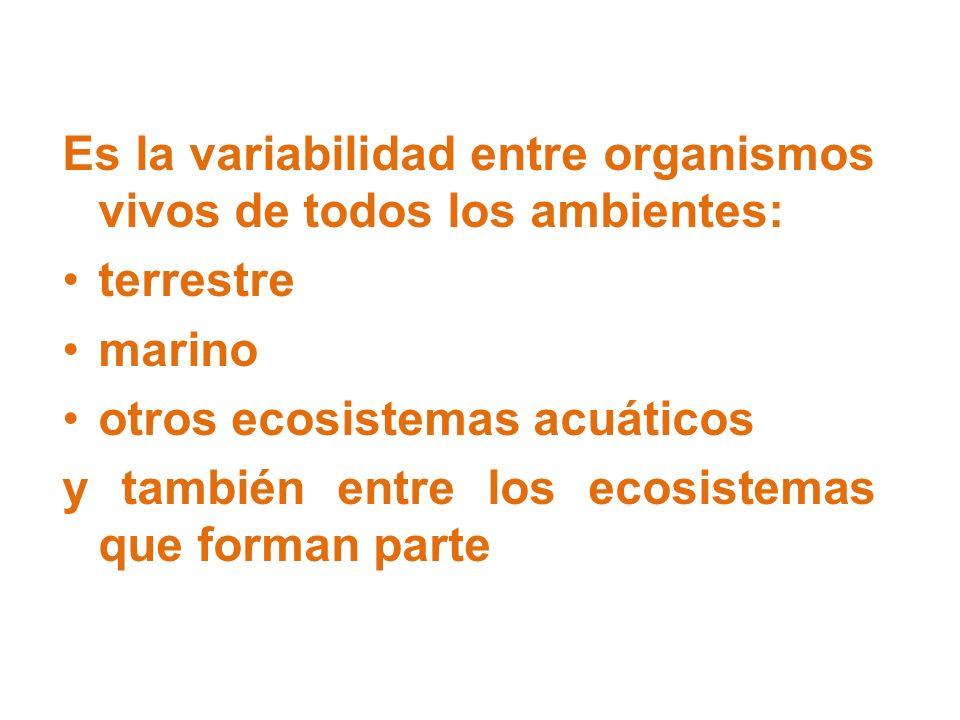 Es la variabilidad entre organismos vivos de todos los ambientes: