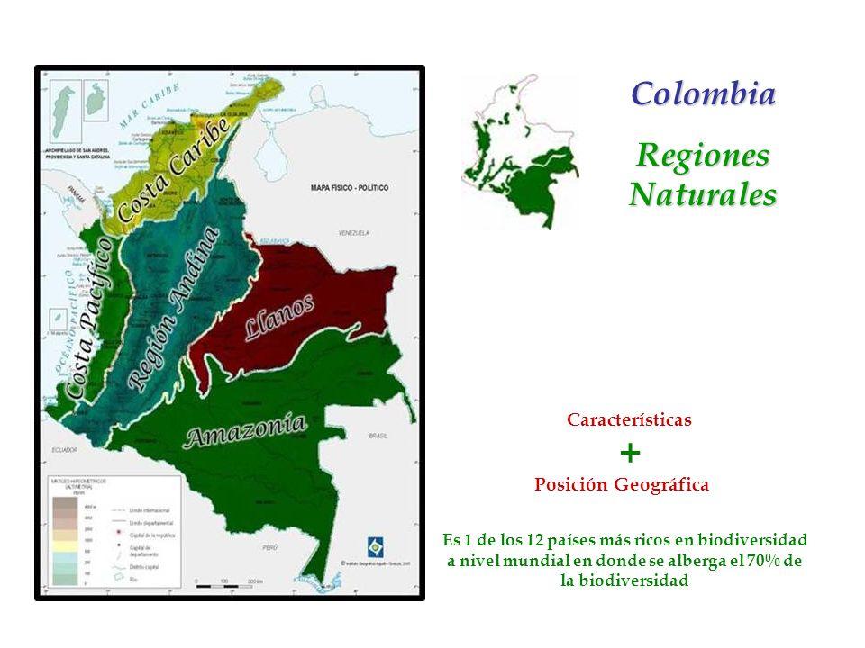 + Colombia Regiones Naturales Características Posición Geográfica