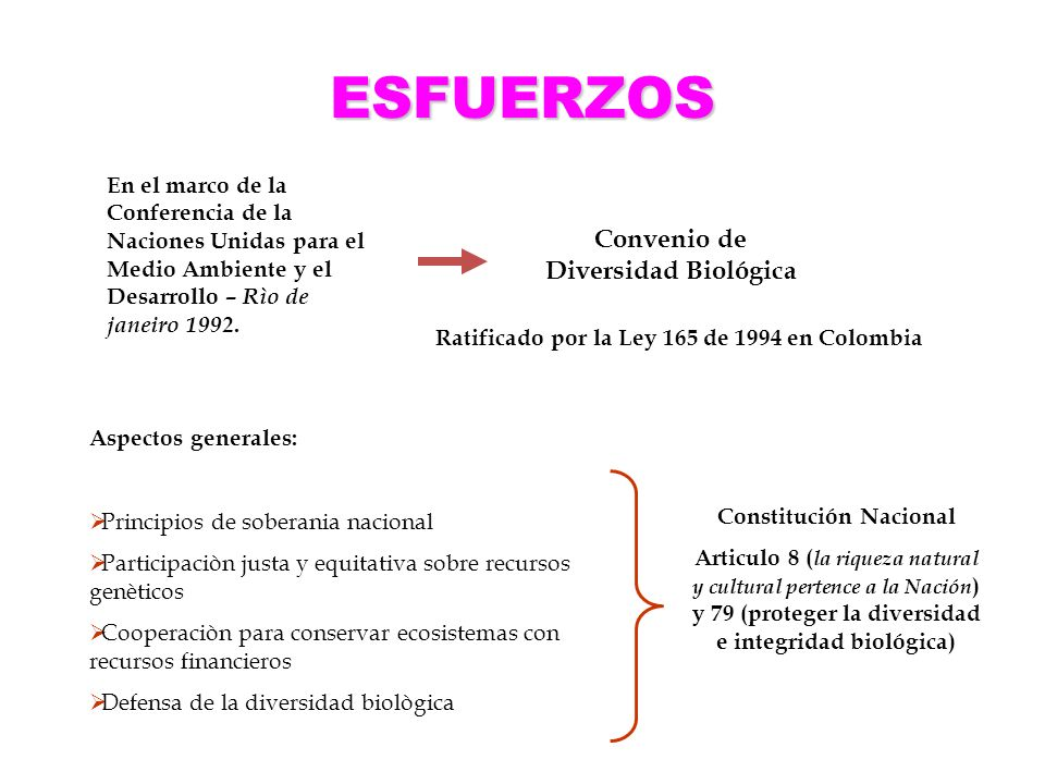 ESFUERZOS Convenio de Diversidad Biológica