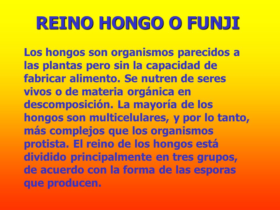 REINO HONGO O FUNJI