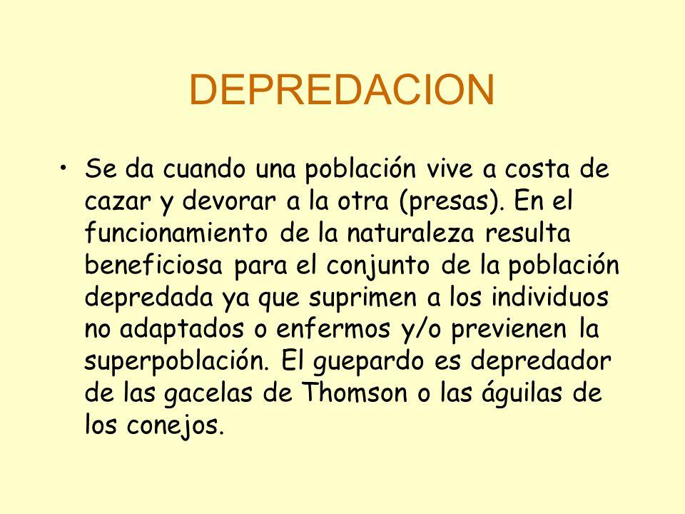DEPREDACION