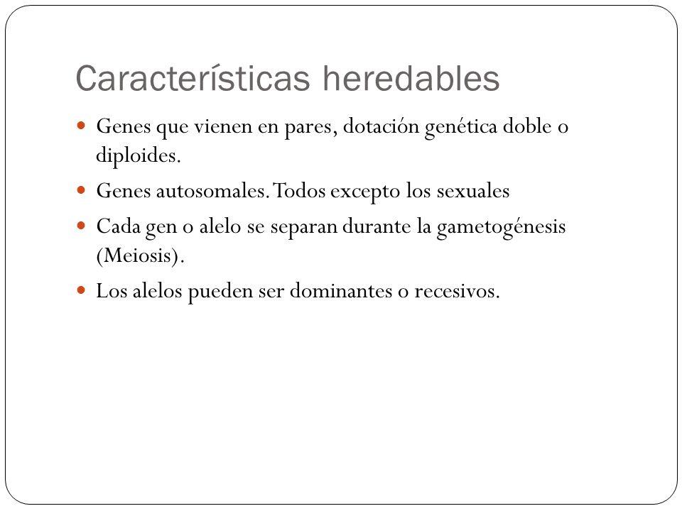 Características heredables