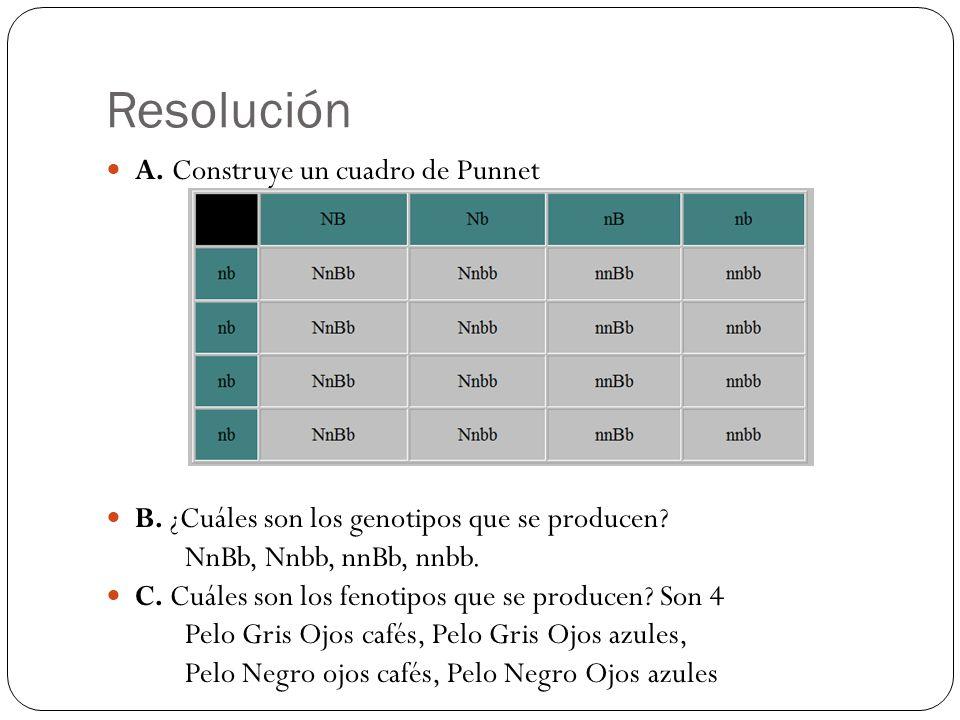 Resolución A. Construye un cuadro de Punnet