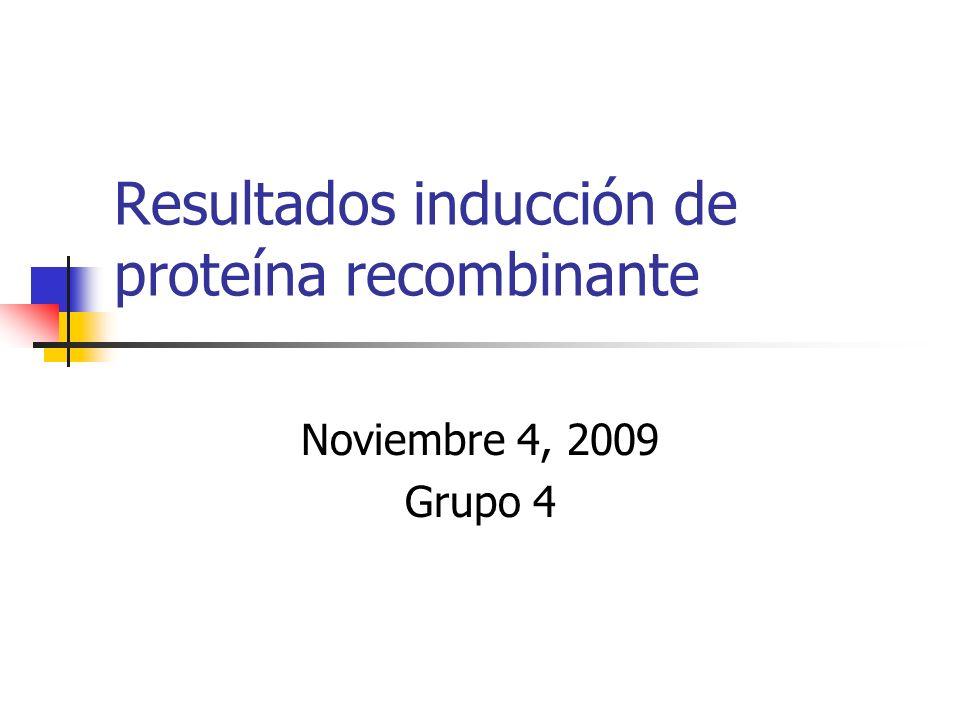 Resultados inducción de proteína recombinante