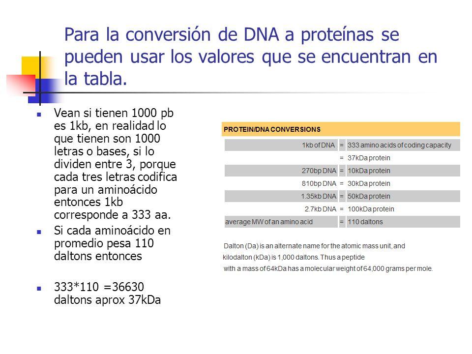 Para la conversión de DNA a proteínas se pueden usar los valores que se encuentran en la tabla.