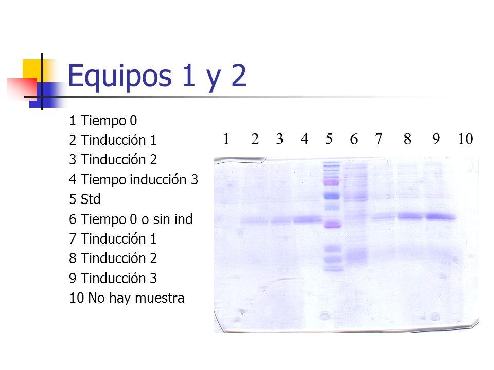 Equipos 1 y 2 1 2 3 4 5 6 7 8 9 10 1 Tiempo 0 2 Tinducción 1