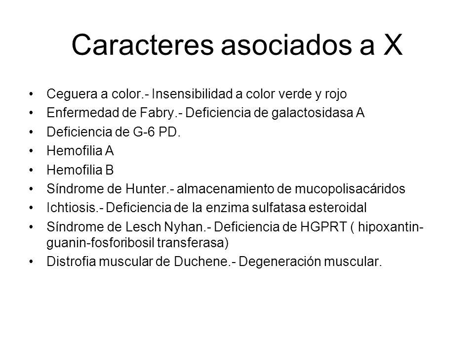 Caracteres asociados a X