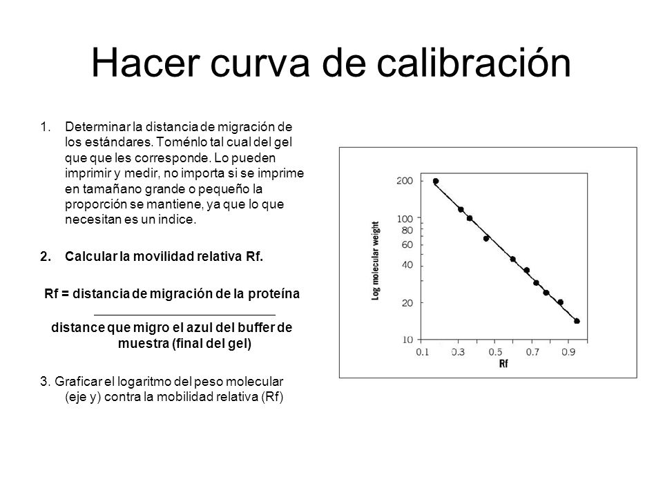 Hacer curva de calibración