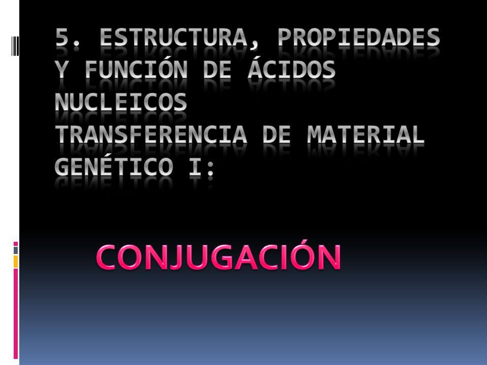 5. ESTRUCTURA, PROPIEDADES Y FUNCIÓN DE ÁCIDOS NUCLEICOS TRANSFERENCIA DE MATERIAL GENÉTICO I: