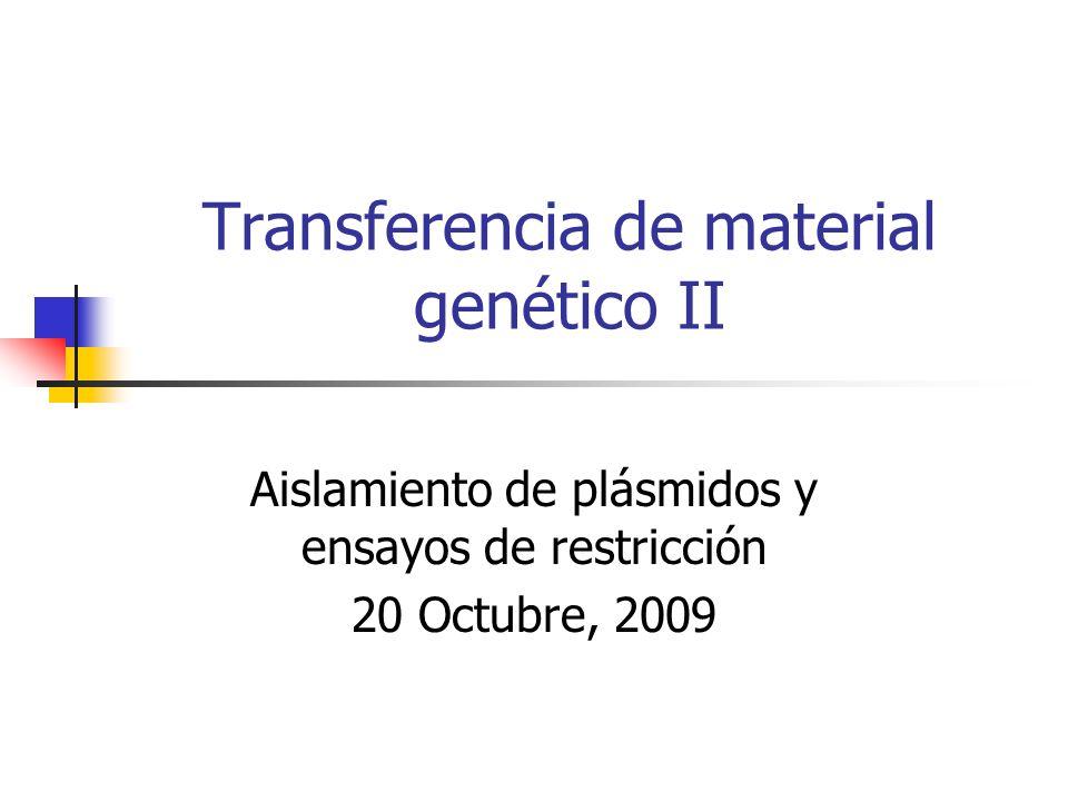 Transferencia de material genético II