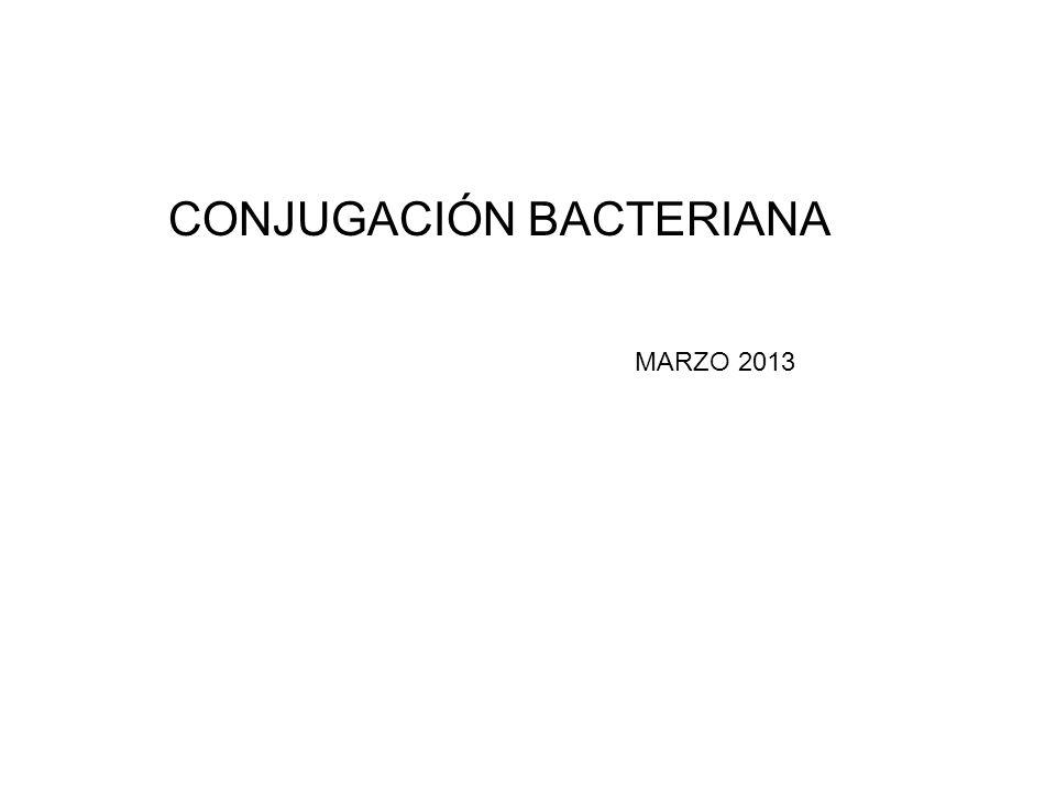 CONJUGACIÓN BACTERIANA MARZO 2013