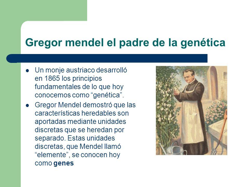 Gregor mendel el padre de la genética