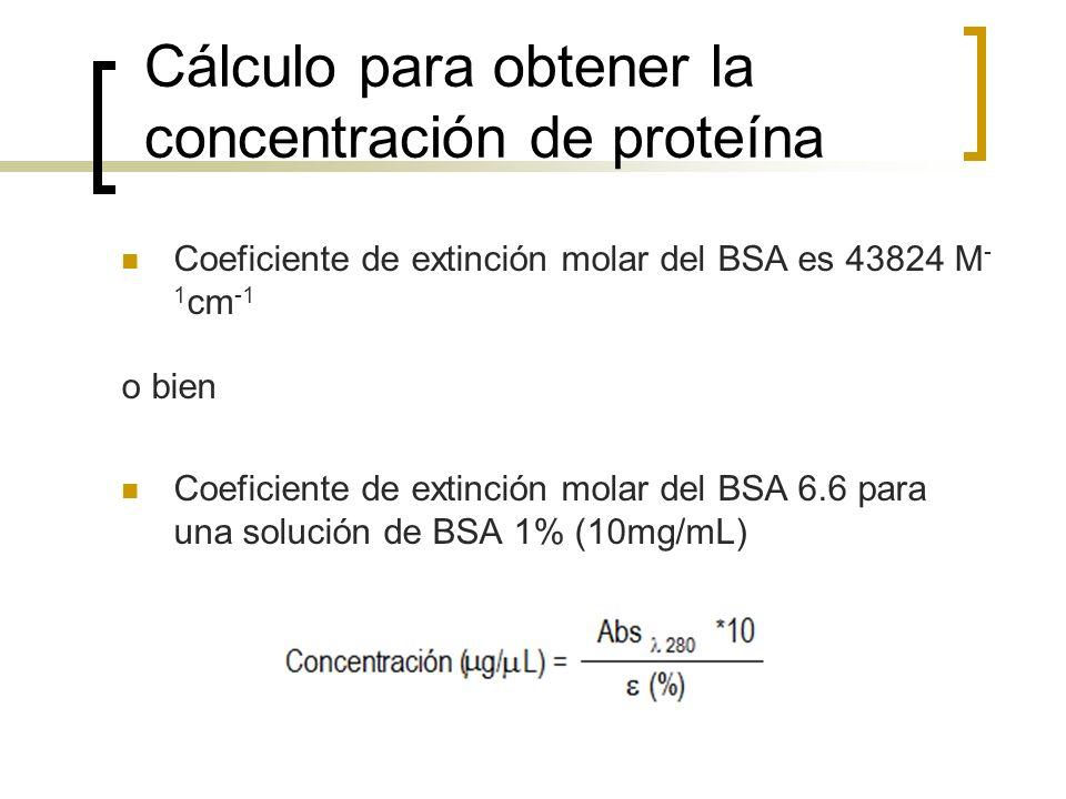 Cálculo para obtener la concentración de proteína