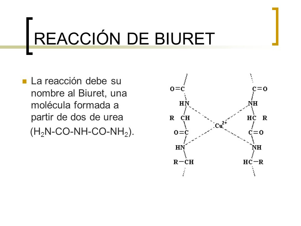 REACCIÓN DE BIURET La reacción debe su nombre al Biuret, una molécula formada a partir de dos de urea.