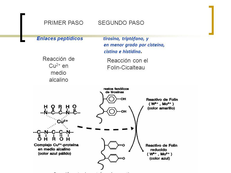 Reacción de Cu2+ en medio alcalino