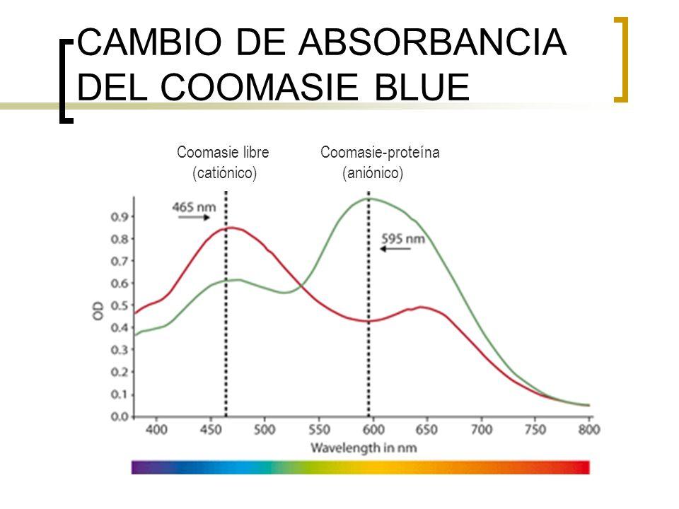 CAMBIO DE ABSORBANCIA DEL COOMASIE BLUE