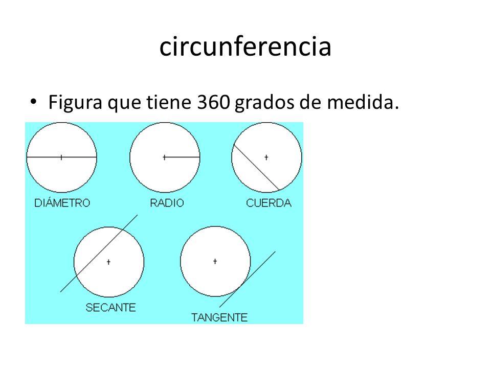 circunferencia Figura que tiene 360 grados de medida.