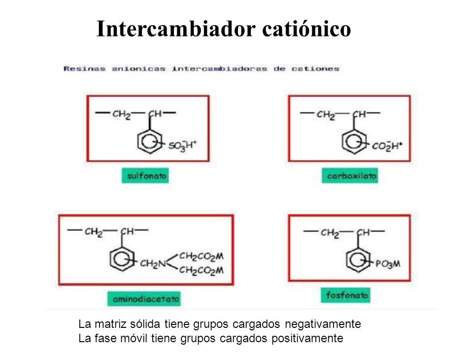 Intercambiador catiónico