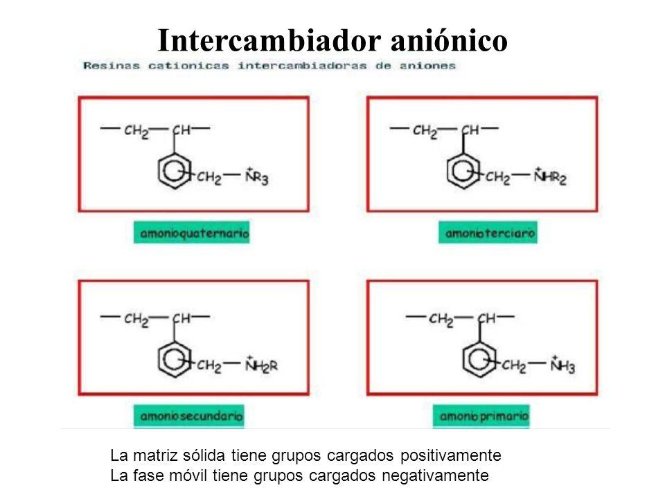Intercambiador aniónico