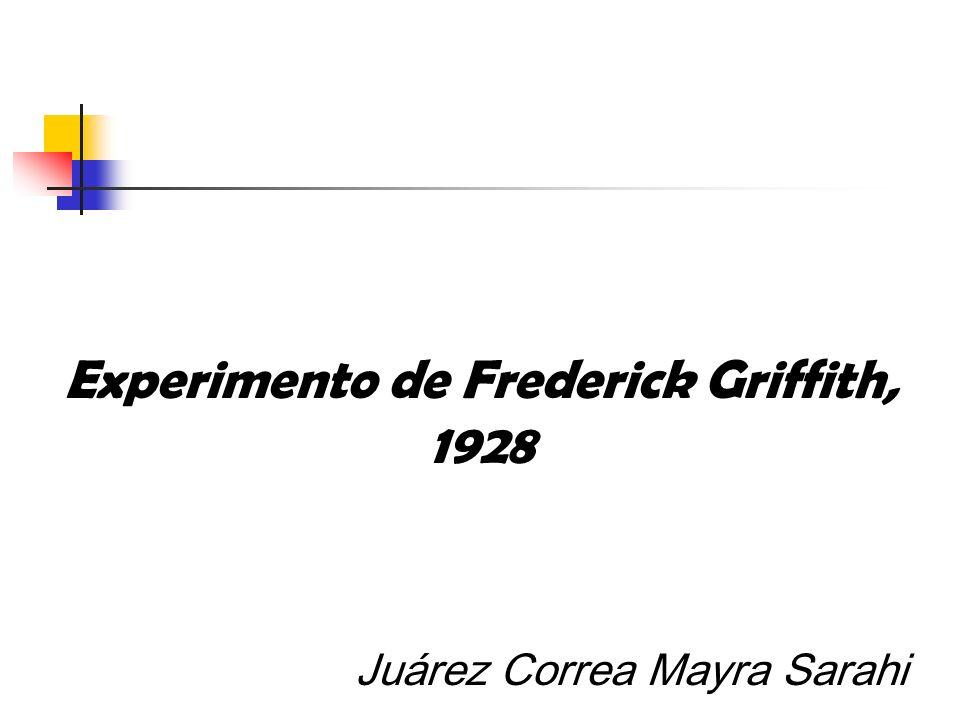 Experimento de Frederick Griffith, 1928 Juárez Correa Mayra Sarahi