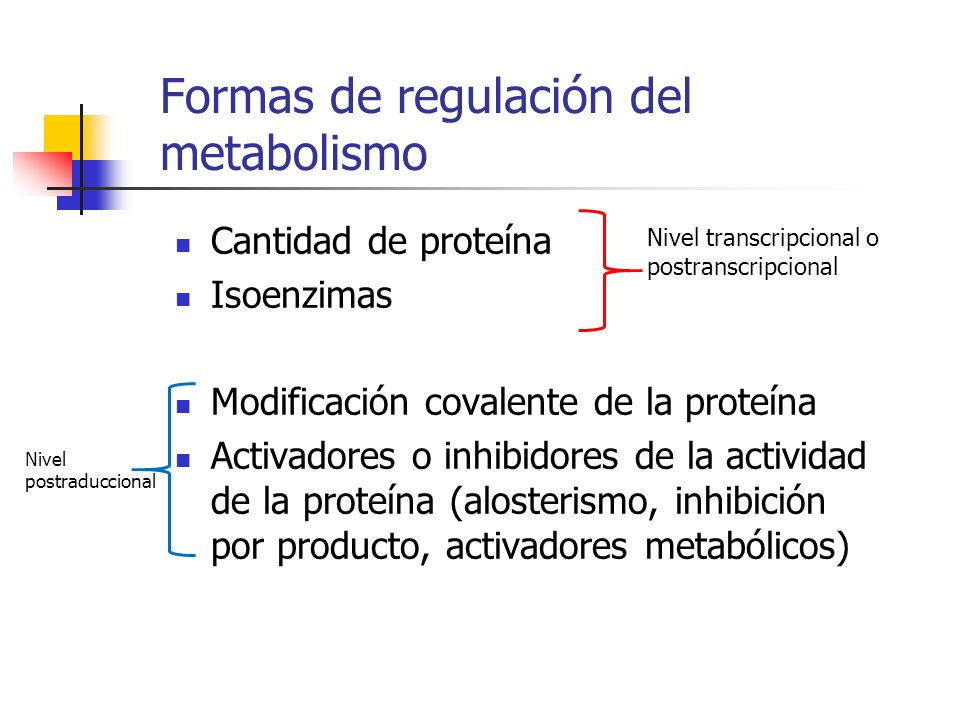 Formas de regulación del metabolismo