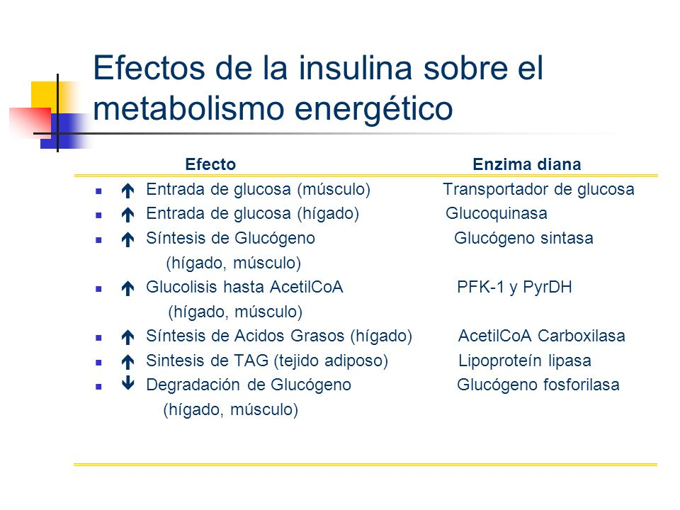 Efectos de la insulina sobre el metabolismo energético