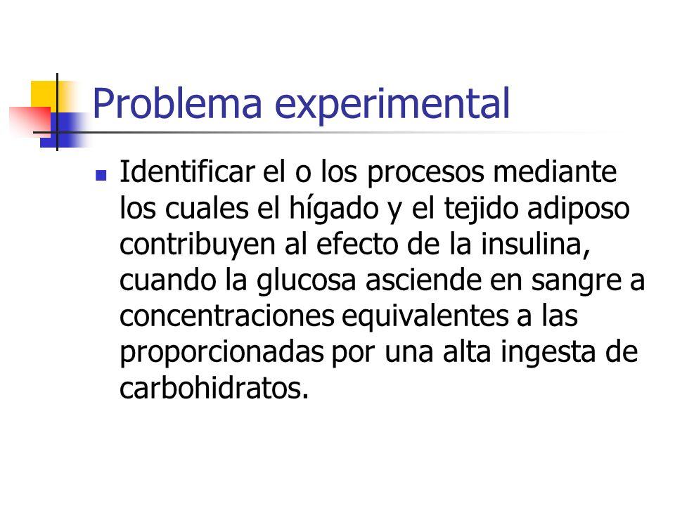 Problema experimental