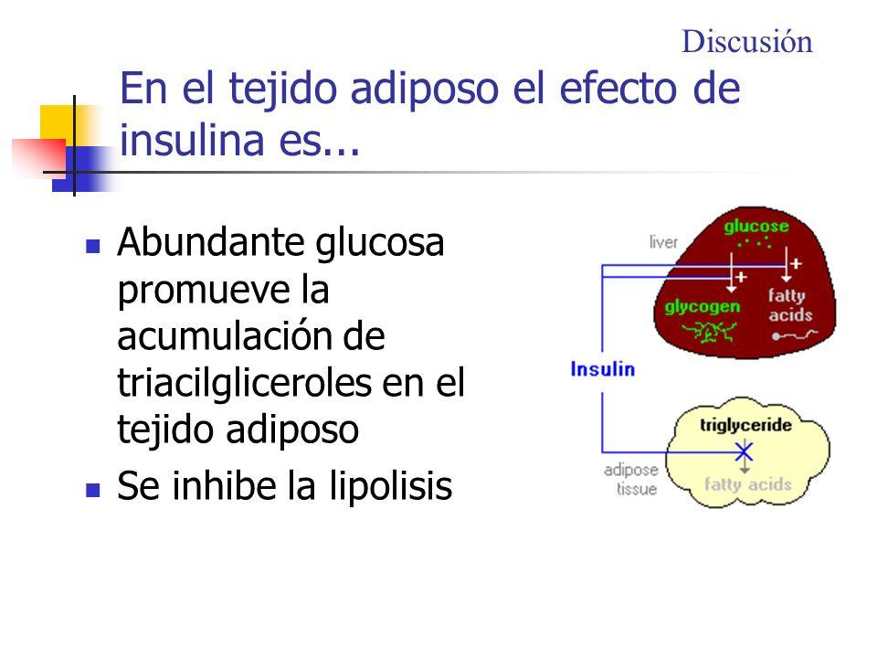 En el tejido adiposo el efecto de insulina es...