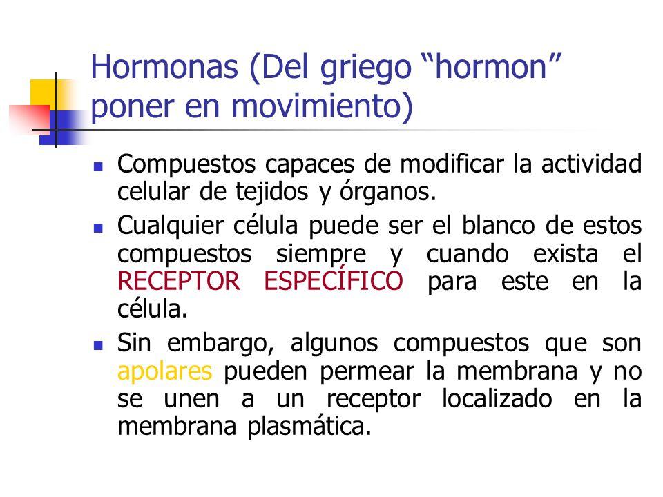 Hormonas (Del griego hormon poner en movimiento)