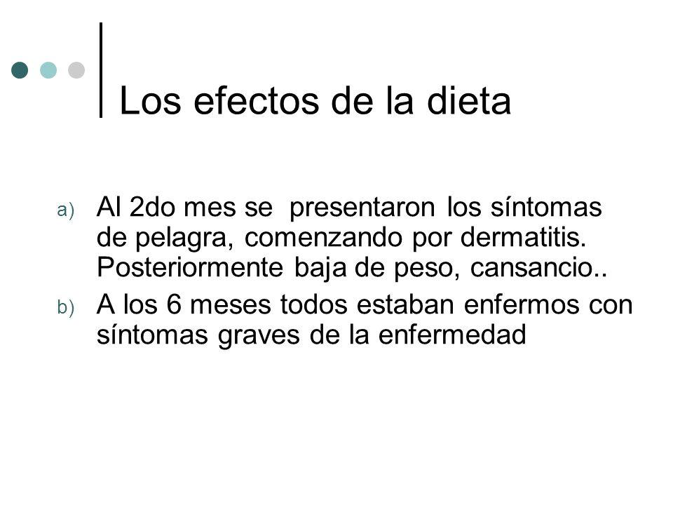 Los efectos de la dieta Al 2do mes se presentaron los síntomas de pelagra, comenzando por dermatitis. Posteriormente baja de peso, cansancio..