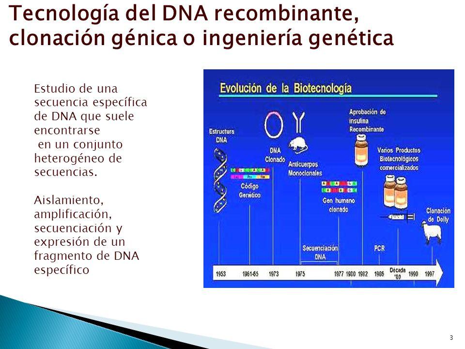 Tecnología del DNA recombinante, clonación génica o ingeniería genética