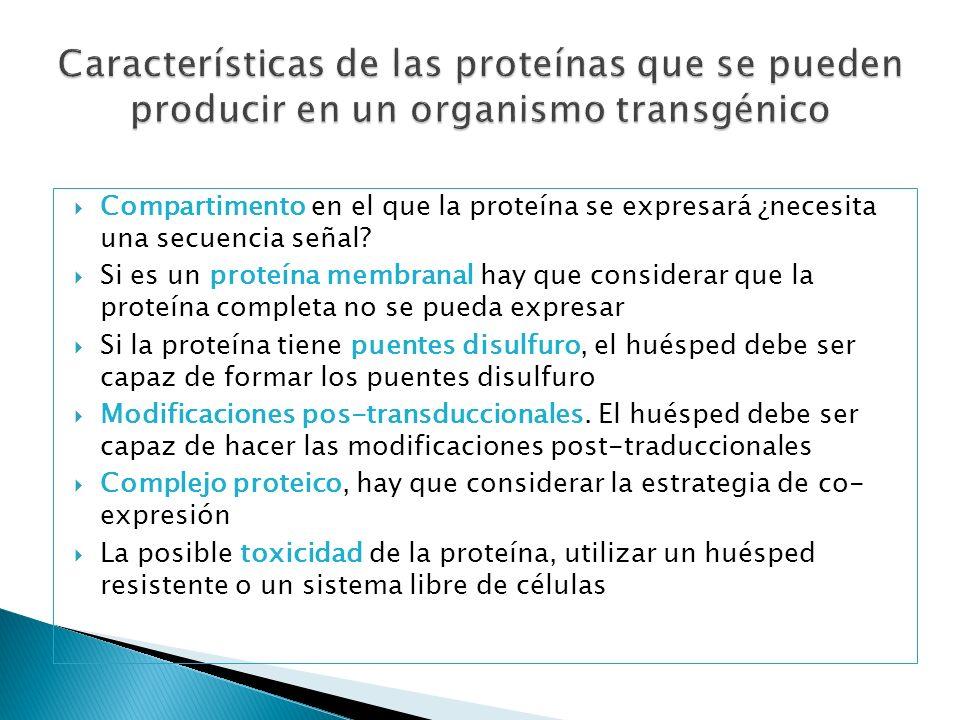 Características de las proteínas que se pueden producir en un organismo transgénico