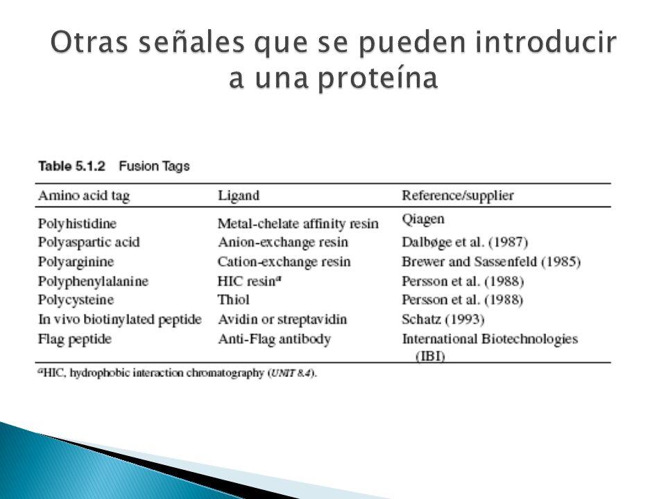 Otras señales que se pueden introducir a una proteína