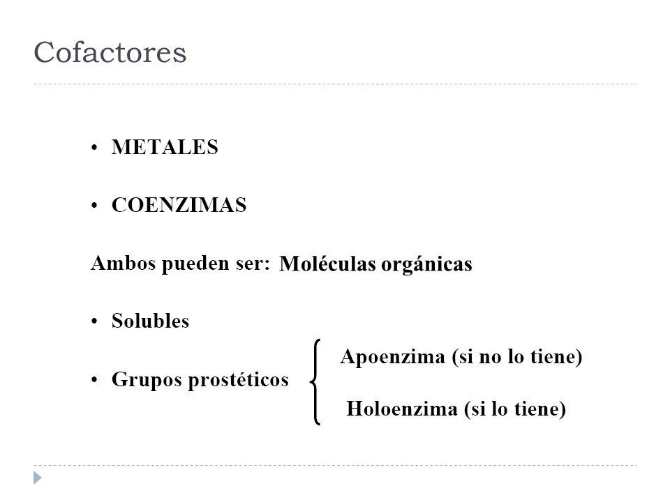 Cofactores Moléculas orgánicas