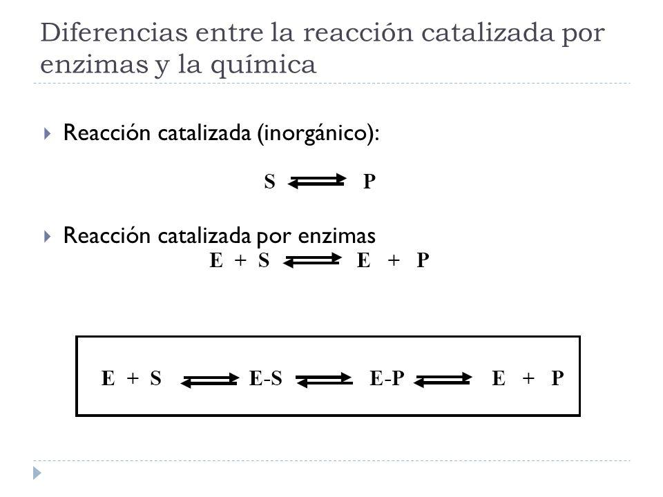 Diferencias entre la reacción catalizada por enzimas y la química