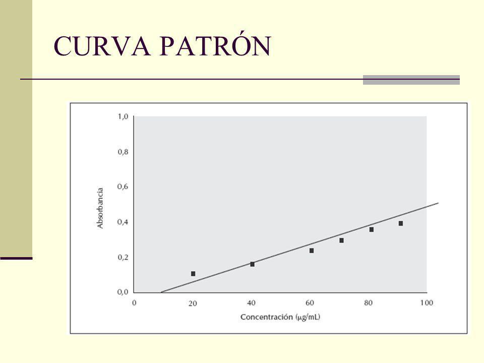 CURVA PATRÓN
