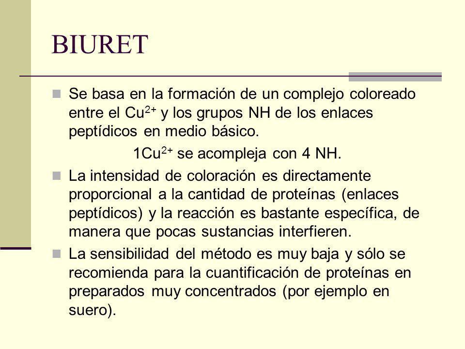 BIURET Se basa en la formación de un complejo coloreado entre el Cu2+ y los grupos NH de los enlaces peptídicos en medio básico.