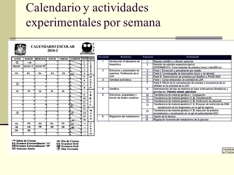 Calendario y actividades experimentales por semana