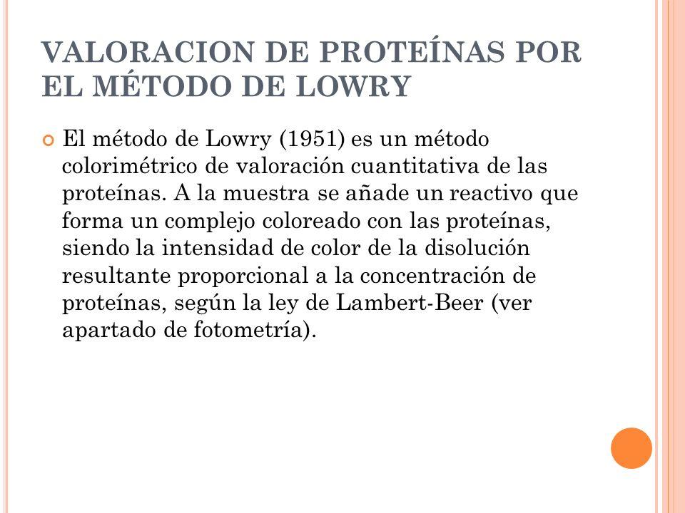 VALORACION DE PROTEÍNAS POR EL MÉTODO DE LOWRY