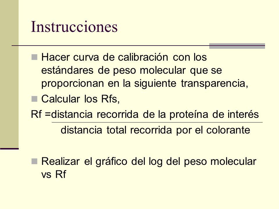 InstruccionesHacer curva de calibración con los estándares de peso molecular que se proporcionan en la siguiente transparencia,