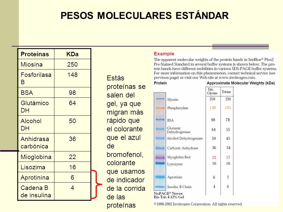 PESOS MOLECULARES ESTÁNDAR