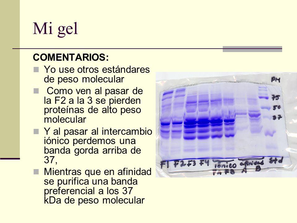 Mi gel COMENTARIOS: Yo use otros estándares de peso molecular