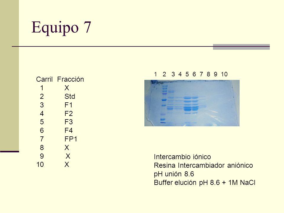 Equipo 7 Carril Fracción 1 X 2 Std 3 F1 4 F2 5 F3 6 F4 7 FP1 8 X 9 X