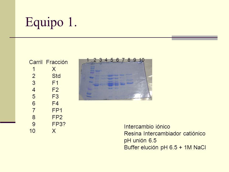 Equipo 1. Carril Fracción 1 X 2 Std 3 F1 4 F2 5 F3 6 F4 7 FP1 8 FP2