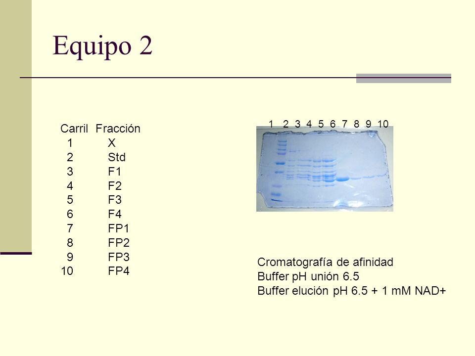 Equipo 2 Carril Fracción 1 X 2 Std 3 F1 4 F2 5 F3 6 F4 7 FP1 8 FP2