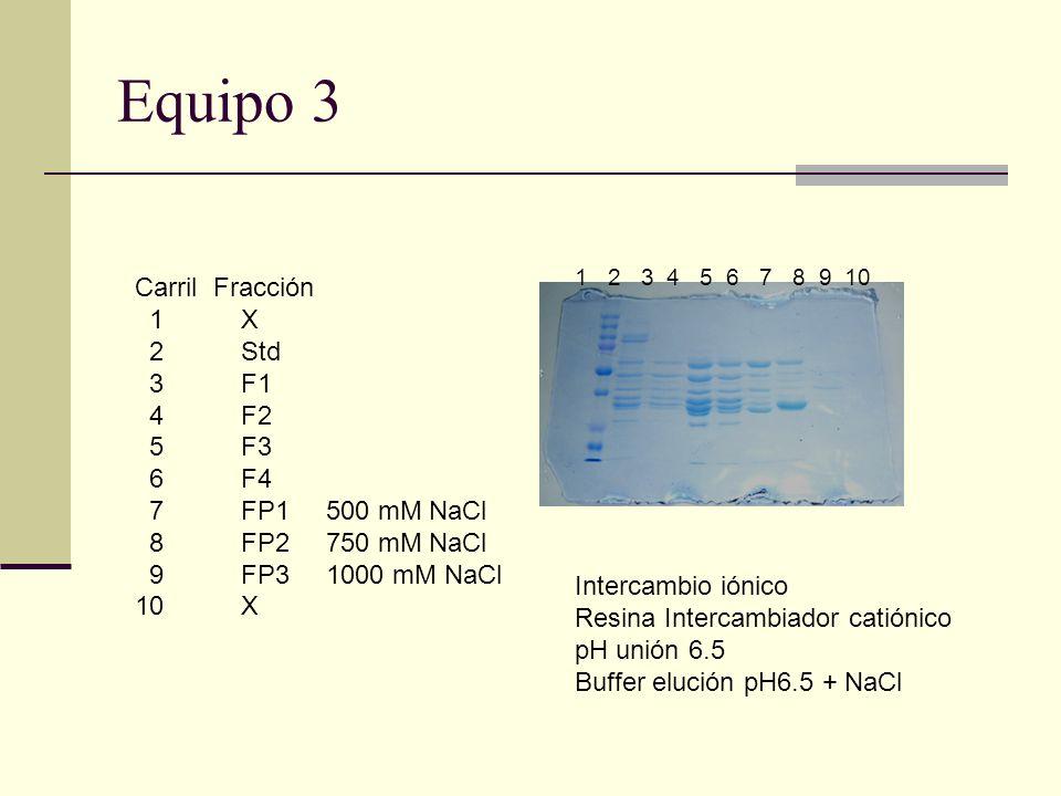 Equipo 3 Carril Fracción 1 X 2 Std 3 F1 4 F2 5 F3 6 F4 7 FP1 8 FP2