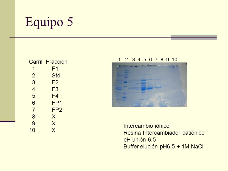 Equipo 5 Carril Fracción 1 F1 2 Std 3 F2 4 F3 5 F4 6 FP1 7 FP2 8 X 9 X